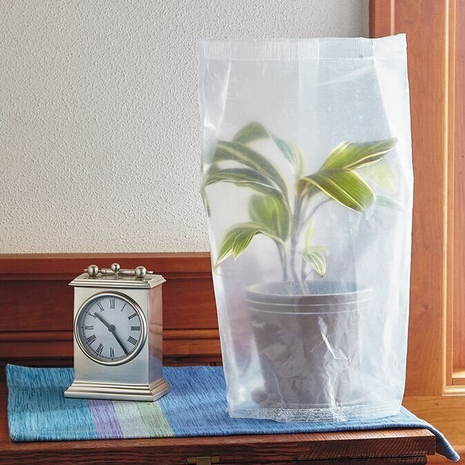 holiday practical plant watering greenhouse method of plant watering