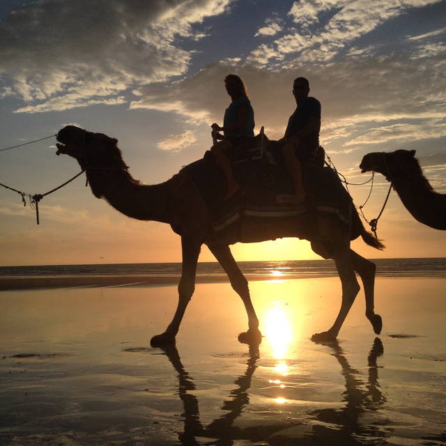 Aboard our camel Aslan, said to be the largest and most regal in Broome