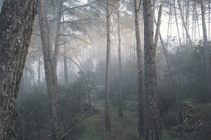 15-11-08_MasiaLaGarriga_PortesObertes8Nov15_158.jpg