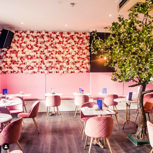ERPINGHAM HOUSE - RESTAURANTOur friends at Erpingham House are the NEWEST Vegan Hotspot to hit Norwich! We've kitted them out with boujee pink booths, flower walls and stunning interiors! With more in the pipeline we can't wait to help create more exciting dining spaces!www.erpinghamhouse.com@erpinghamhouse