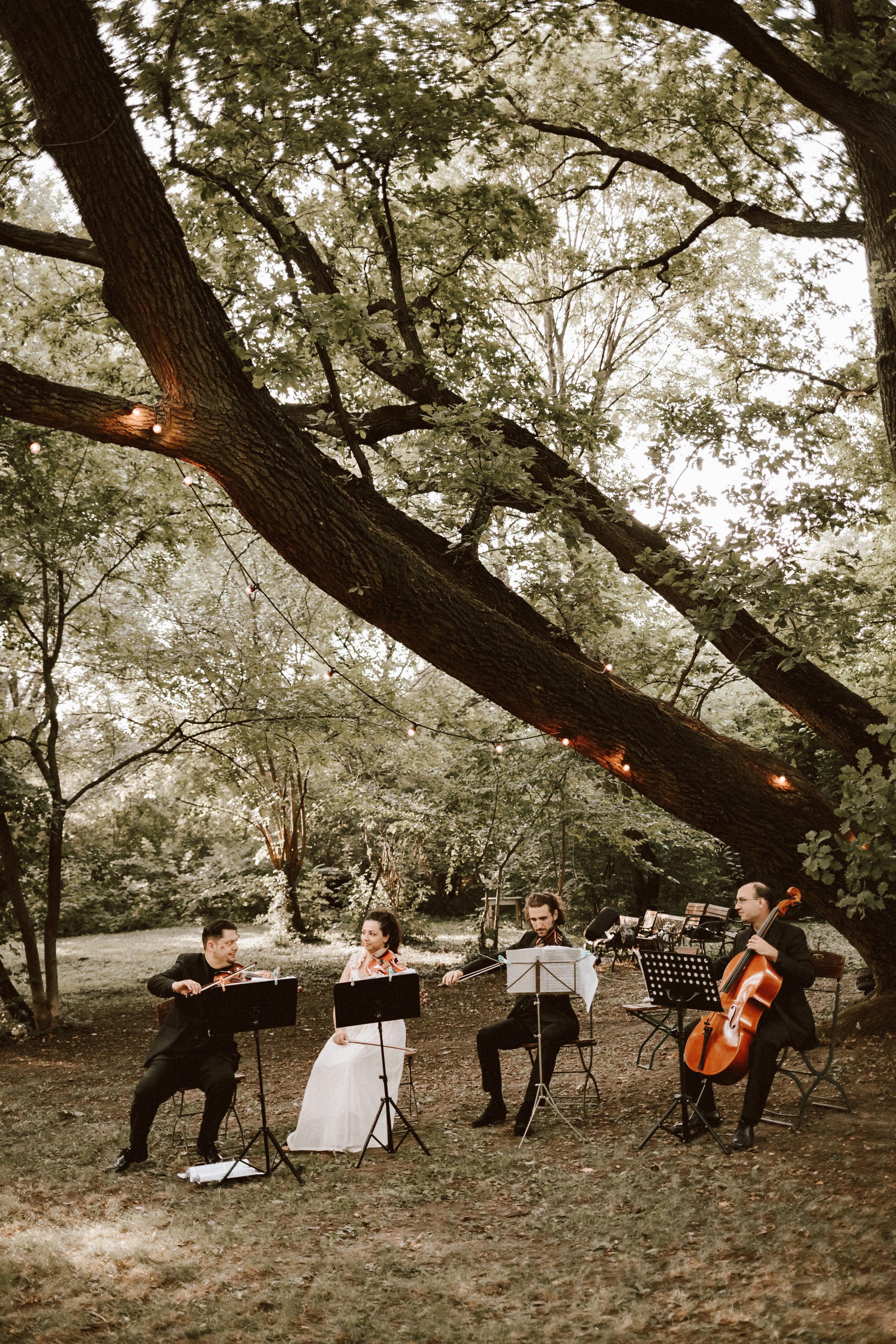 1823-Niki+Miki-wedding-263.jpg