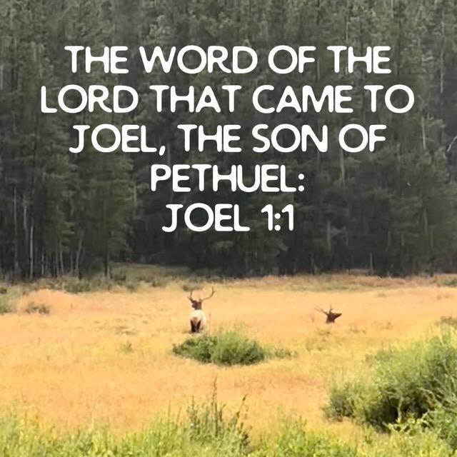 Sermons From Joel