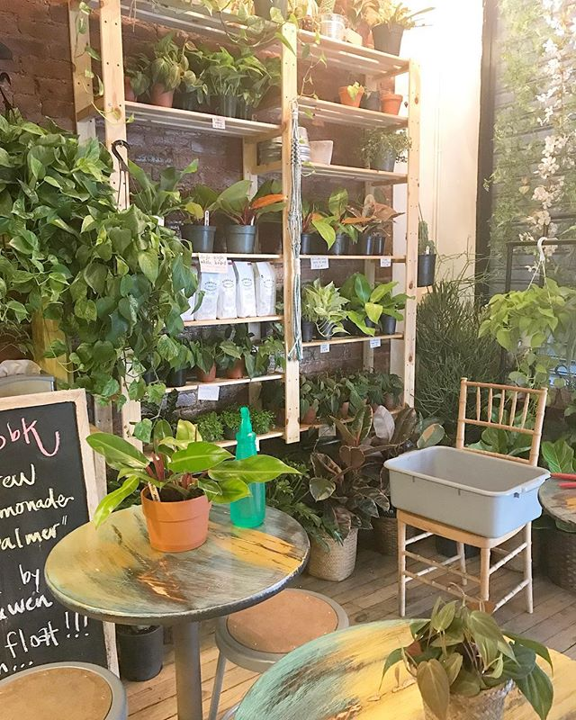 #oldie but hoodie...last summer and all the #plants on a #watering day 🌿🐣🌿 #happysunday! stop in and say *hi*...we're open til 5!
