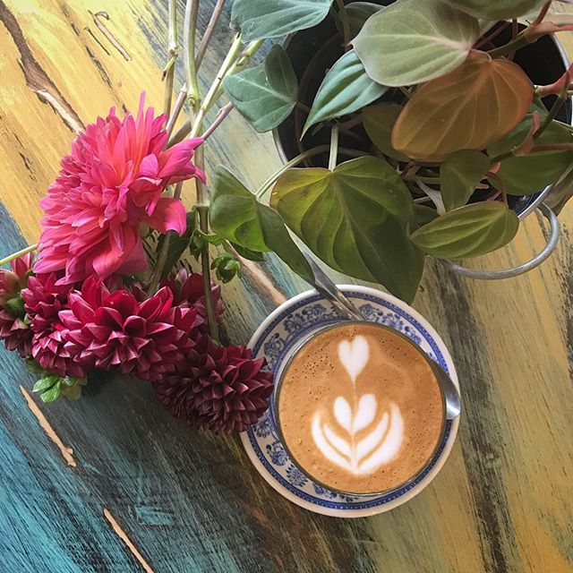 everyday is #earthday! we wouldn't be able to do this without you, beautiful #earth! thank you for the abundance of #coffee, #plants, and #flowers you provide throughout the seasons. #happyearthday! we love you! 📸 featuring #philodendronmicans, a #cortado by @kobrickcoffee & @battenkillcreamery, and #dahlias by @rocksteadyfarm 💗💗💗