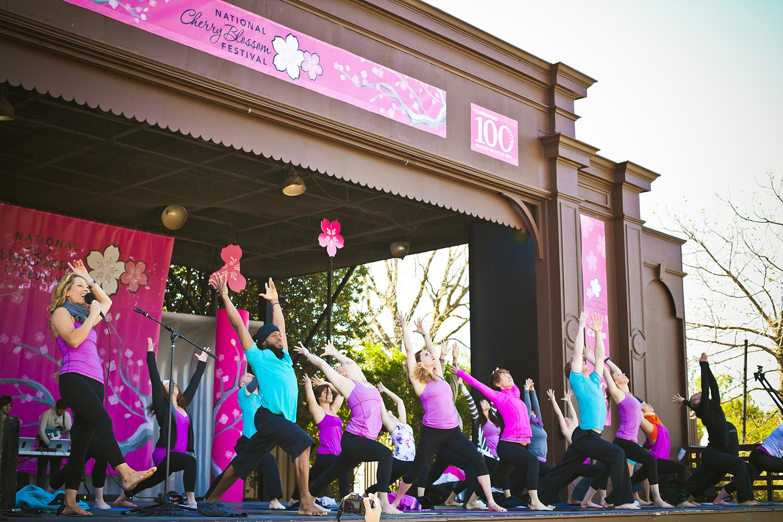 Homegrown Power Yoga at at Cherry Blossom Yoga, Washington, D.C.