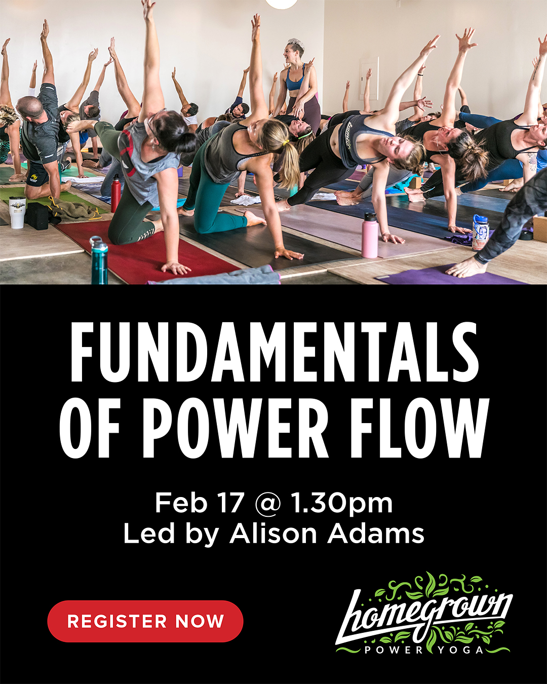 Fundamentals of Power Flow Poster Homegrown Power Yoga