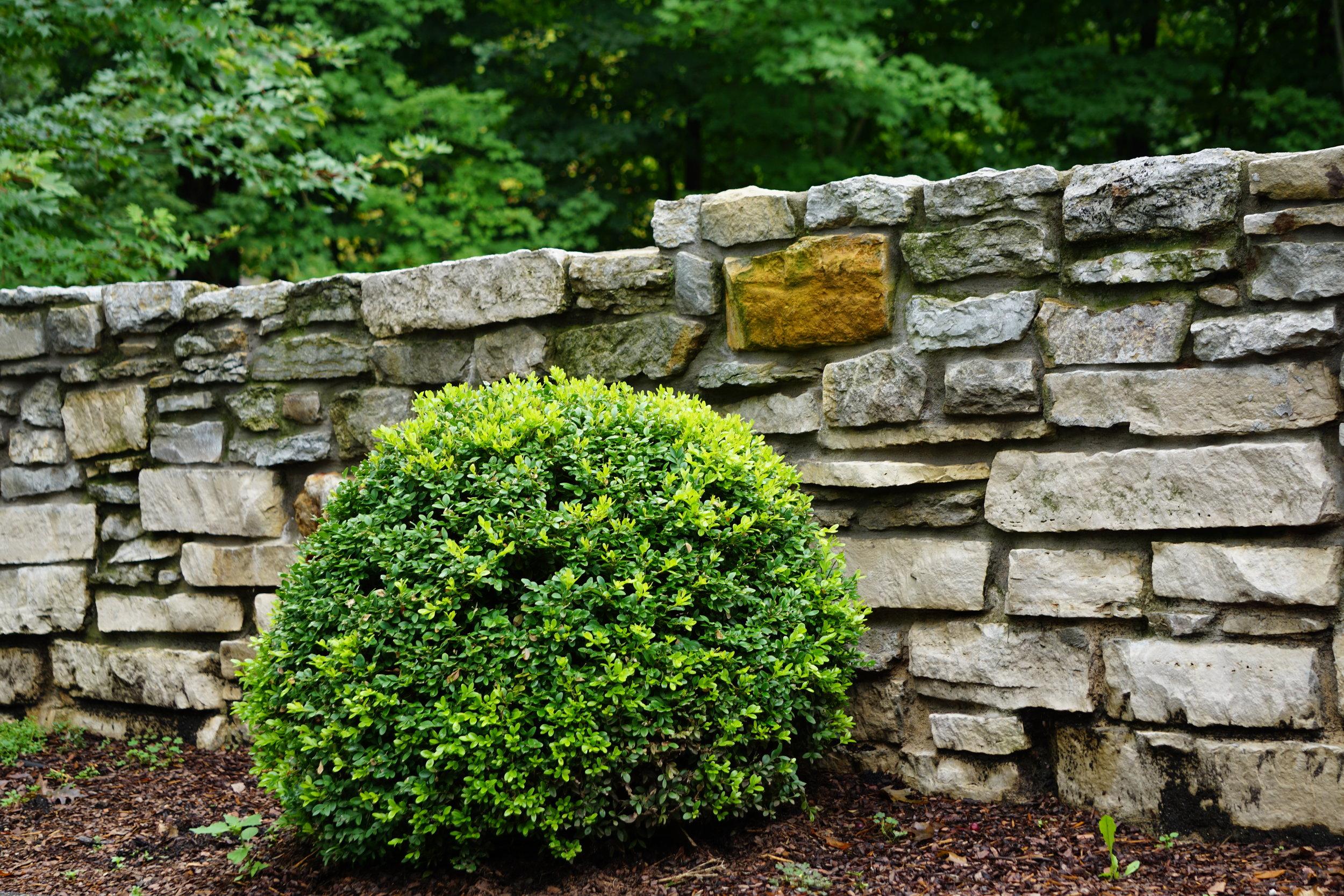 Platville Wall.JPG