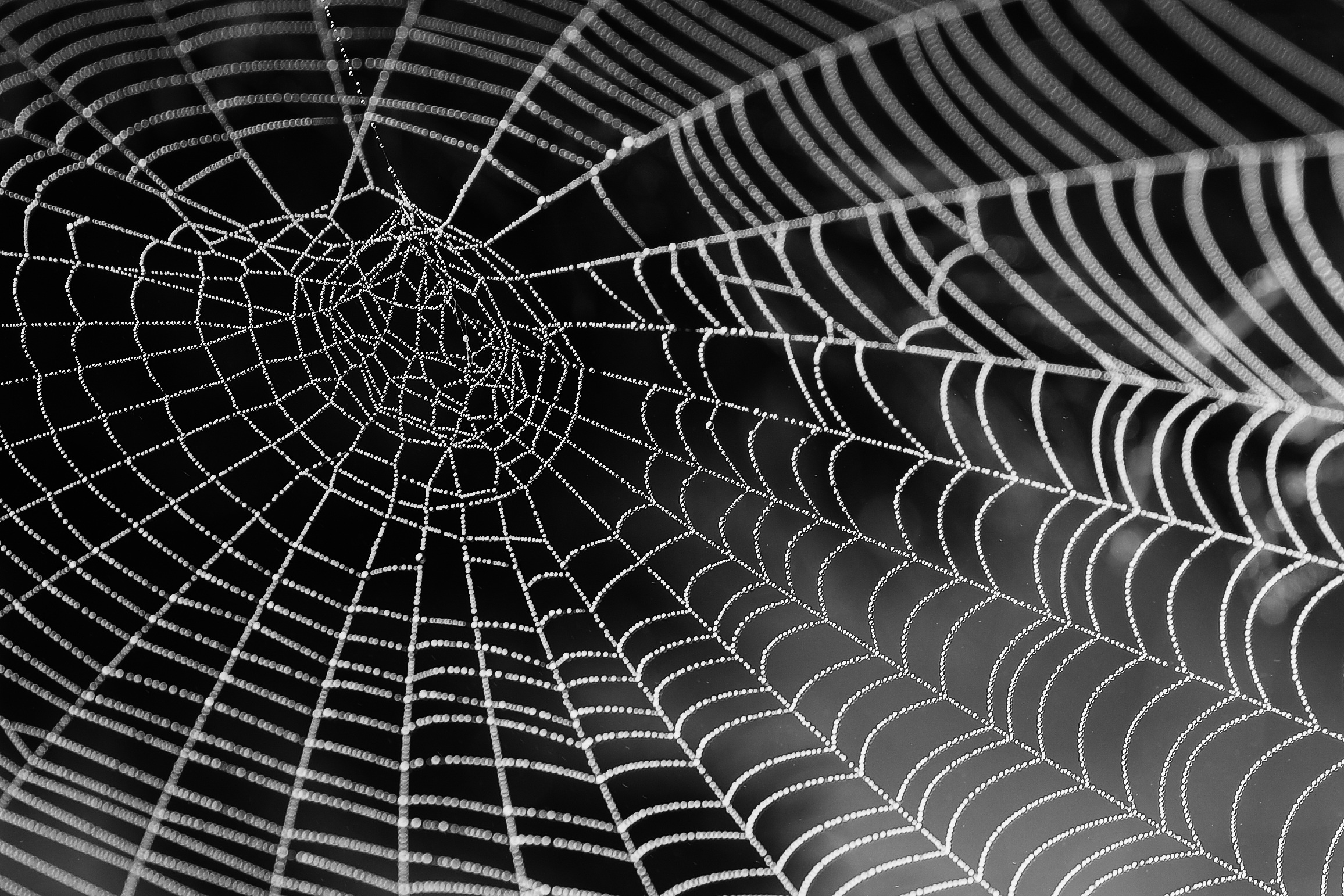 Web Imperfect copy.jpg