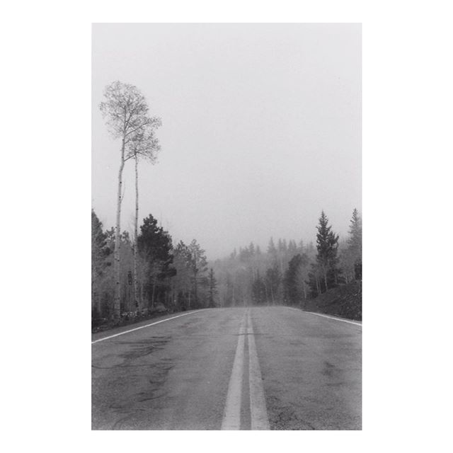 Siftin' through film prints, feelin' real hipster. . . . . . #bw #35mm #film #bwfilm #utahlandscape #shotonfilm #magazine35mm #filmisnotdead