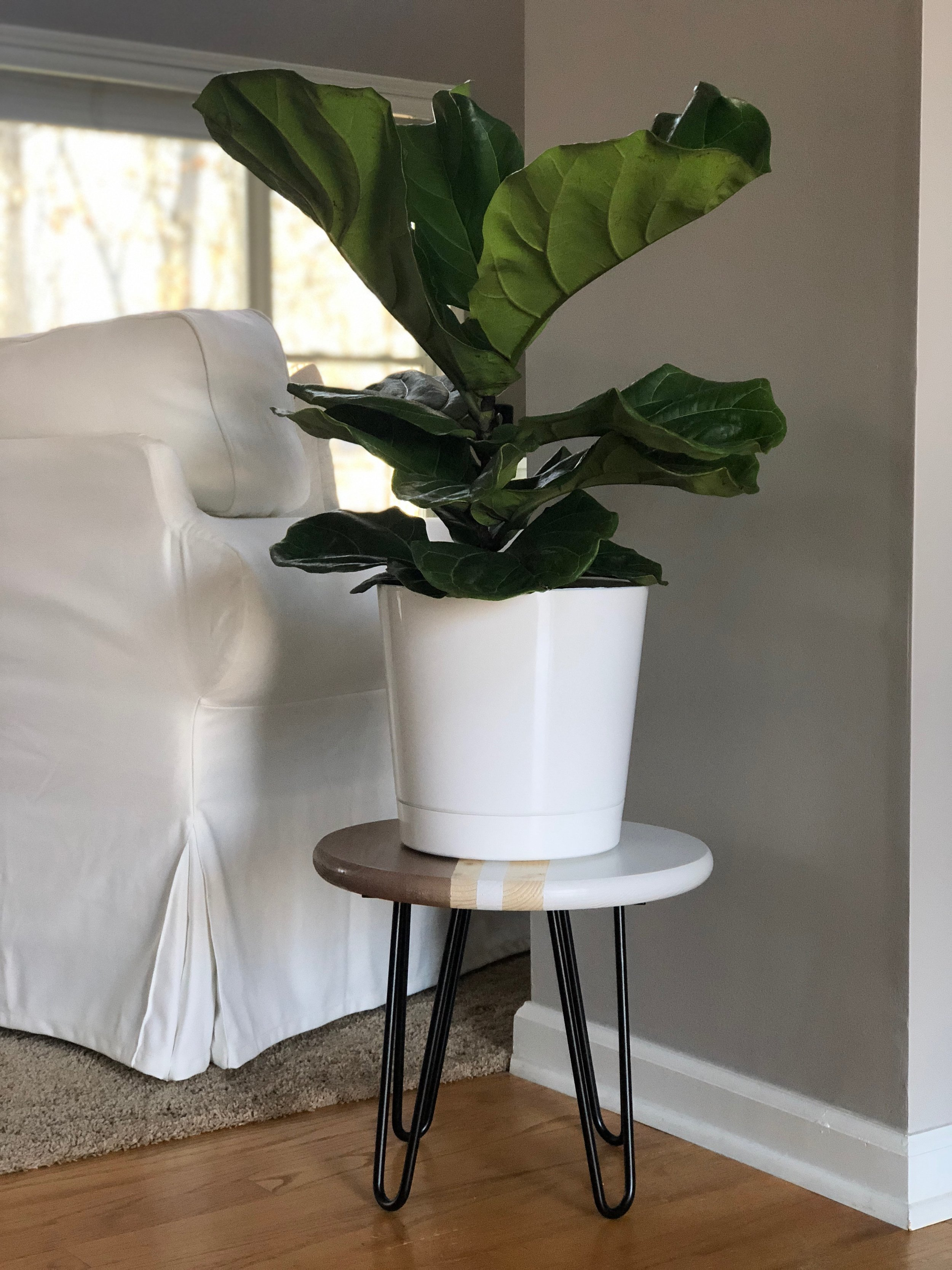 plant stand - white and rose gold.JPG