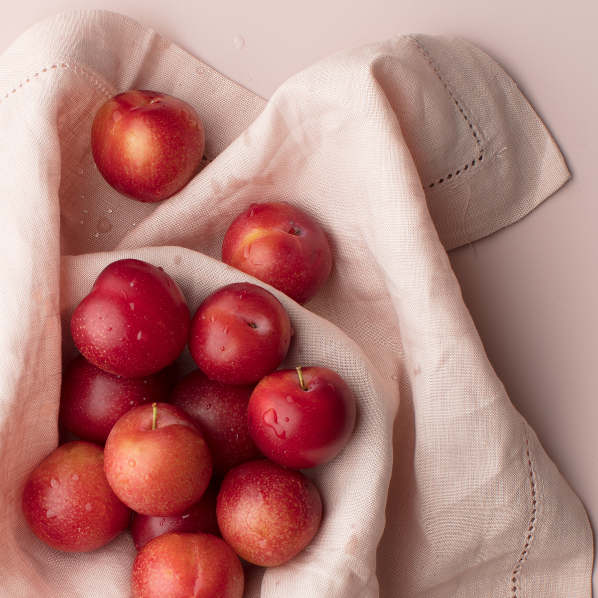 Red Cherry Plums on Blush Background_Social Squares Stock Image05.JPG