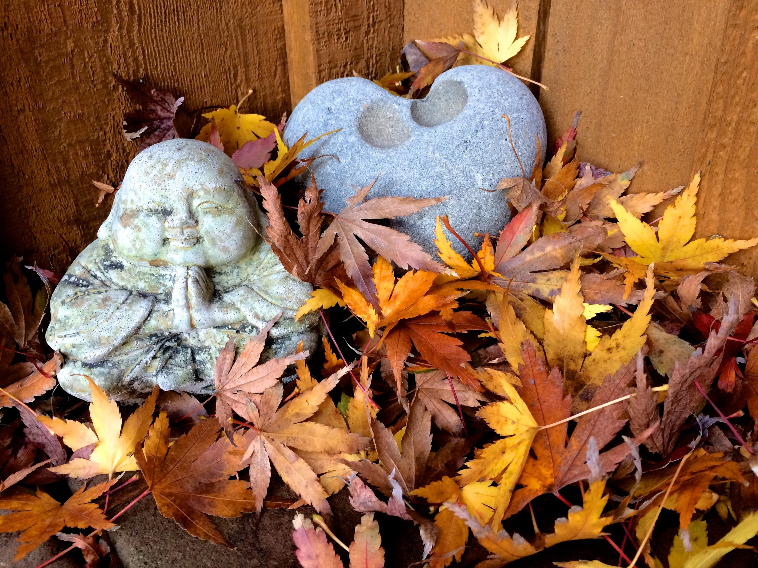 Smiling Buddha contemplating the arrival of fall.