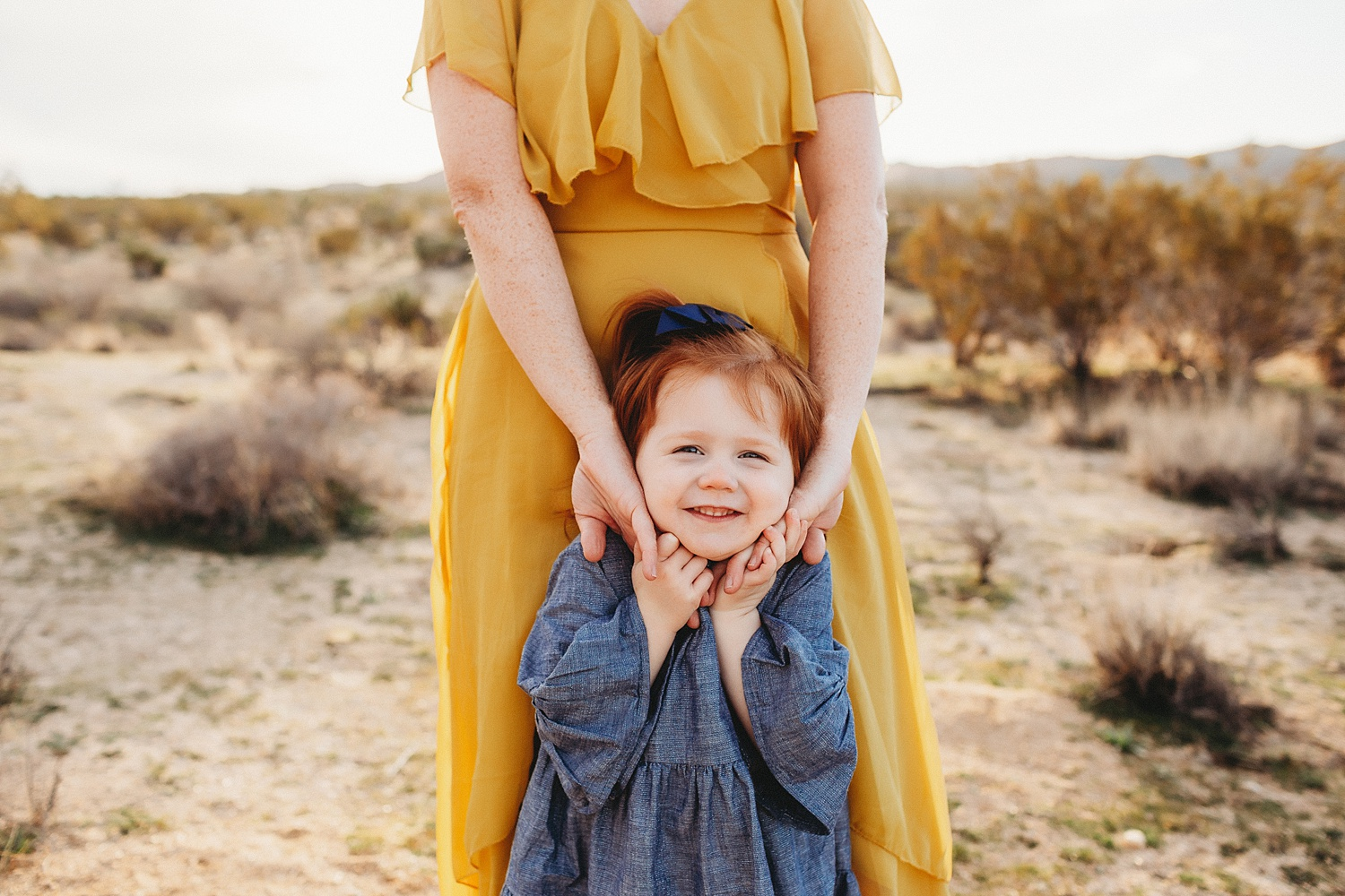 joshua-tree-family-photographer_0005.jpg
