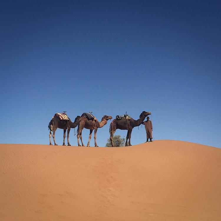 Erg Chigaga, Morocco