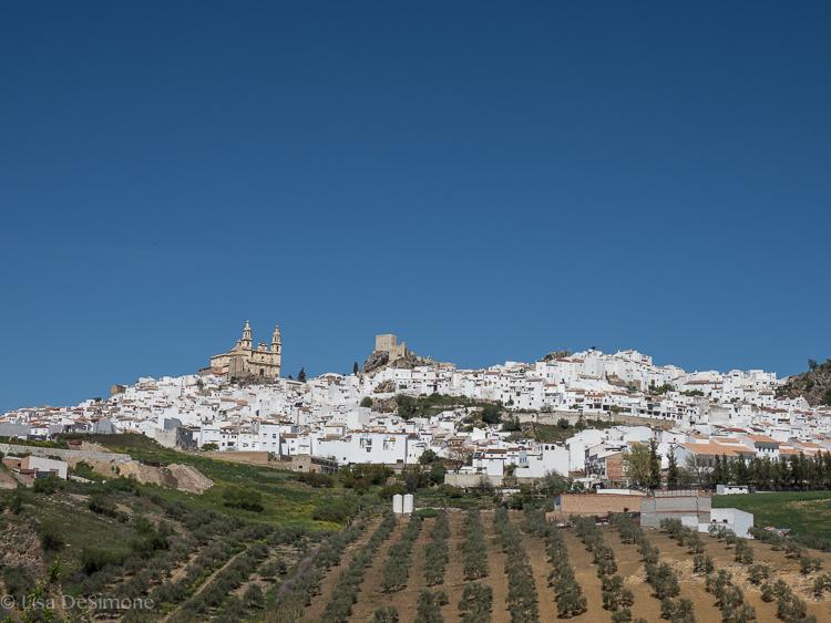 A pueblo blanco in Andalusia, Spain