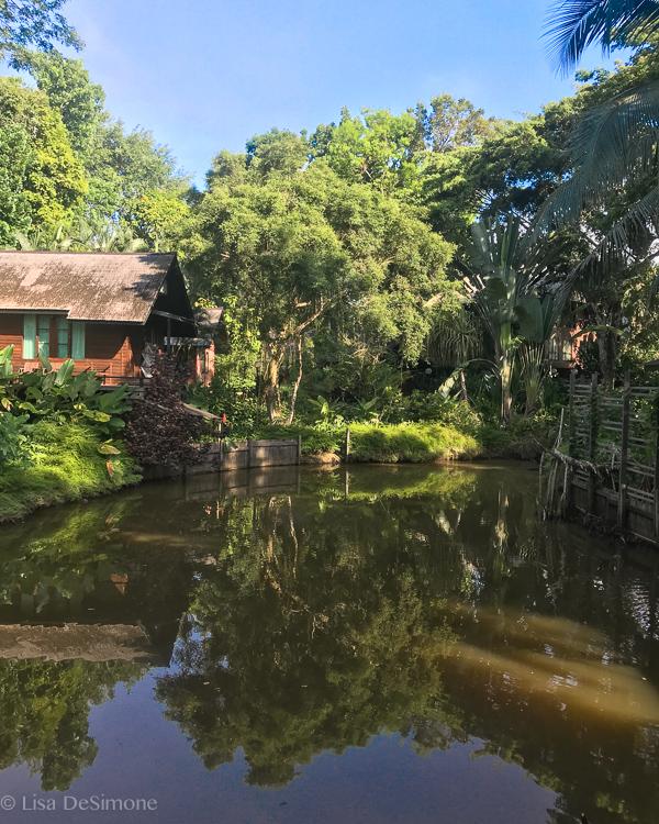 Sepilok Nature Resort , Borneo