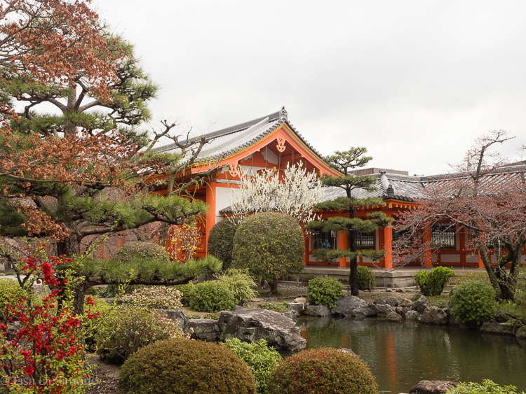 Beautiful gardens in Kyoto, Japan
