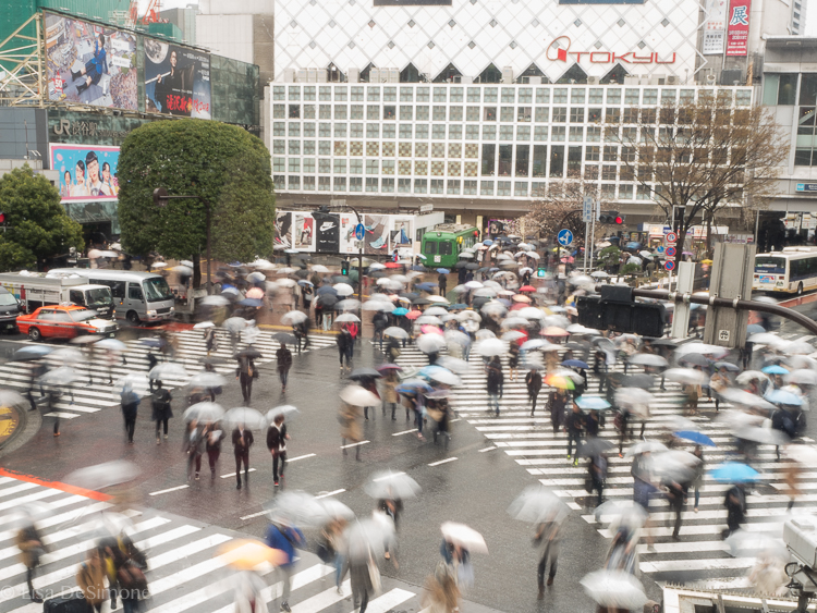 Shibuya crossing on a rainy day in Tokyo