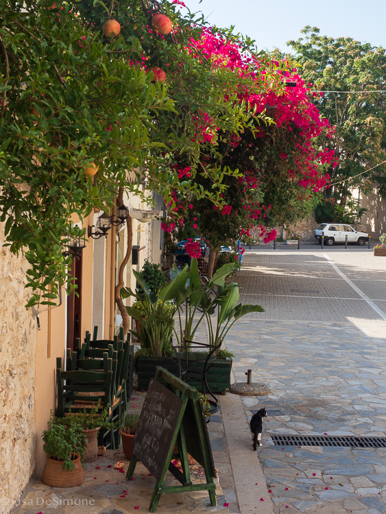 Greece -122.jpg