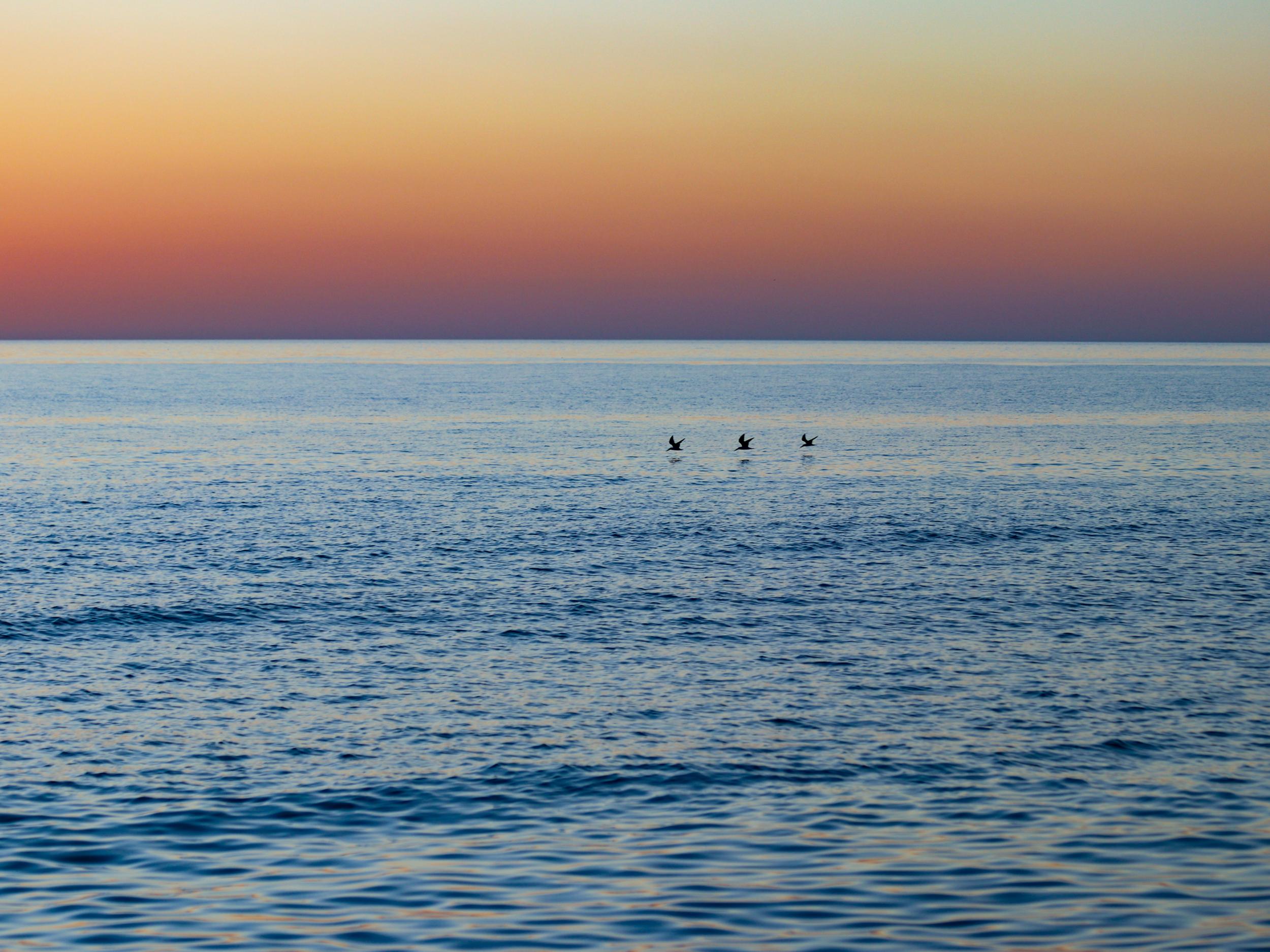 Sunset-8-Poster_printfile_default_18x24.png
