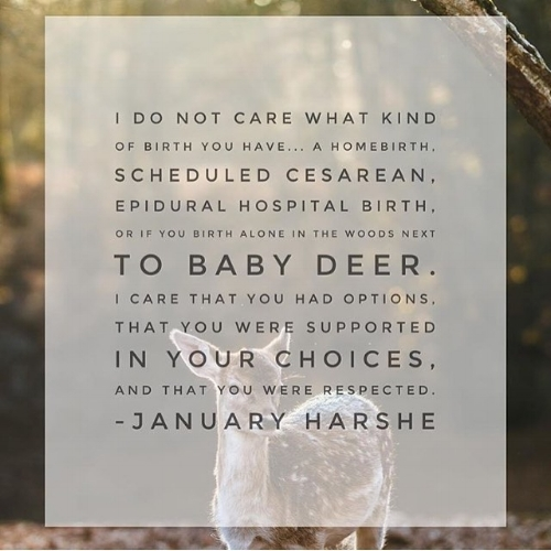 January Harshe, Birth Without Fear