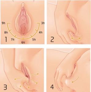 perineal-massage.jpg