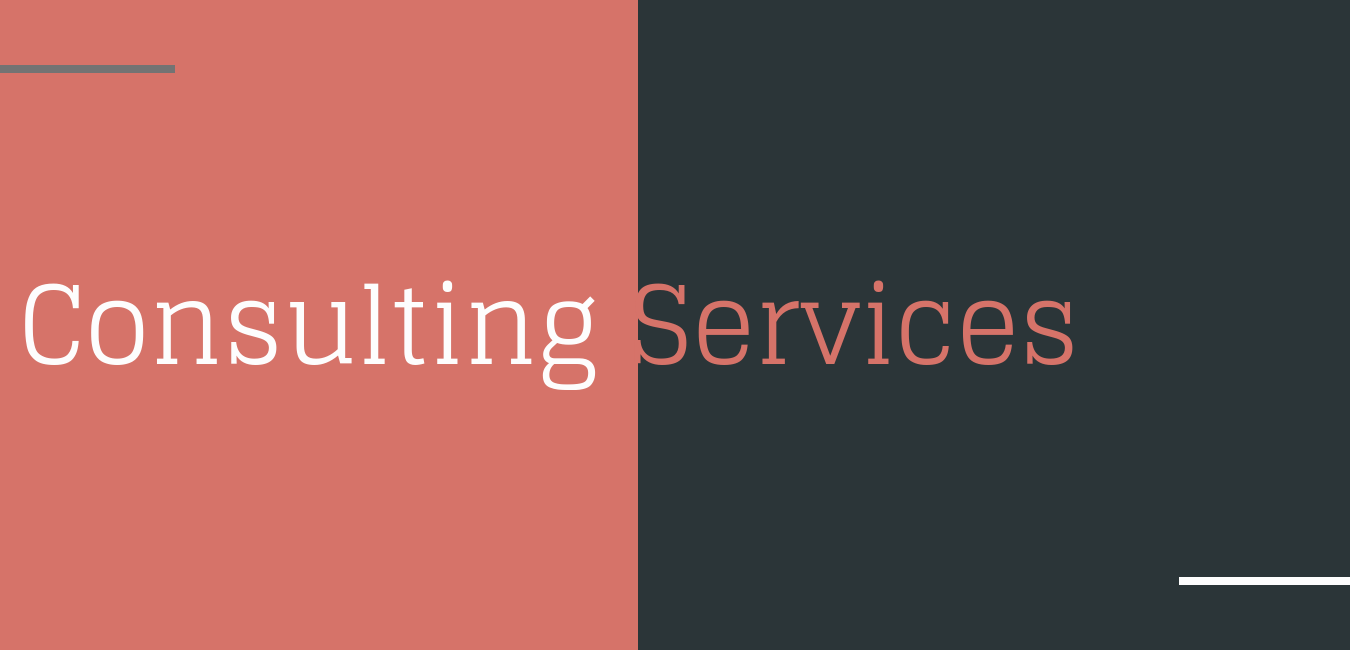 Consulting Services Hero.png