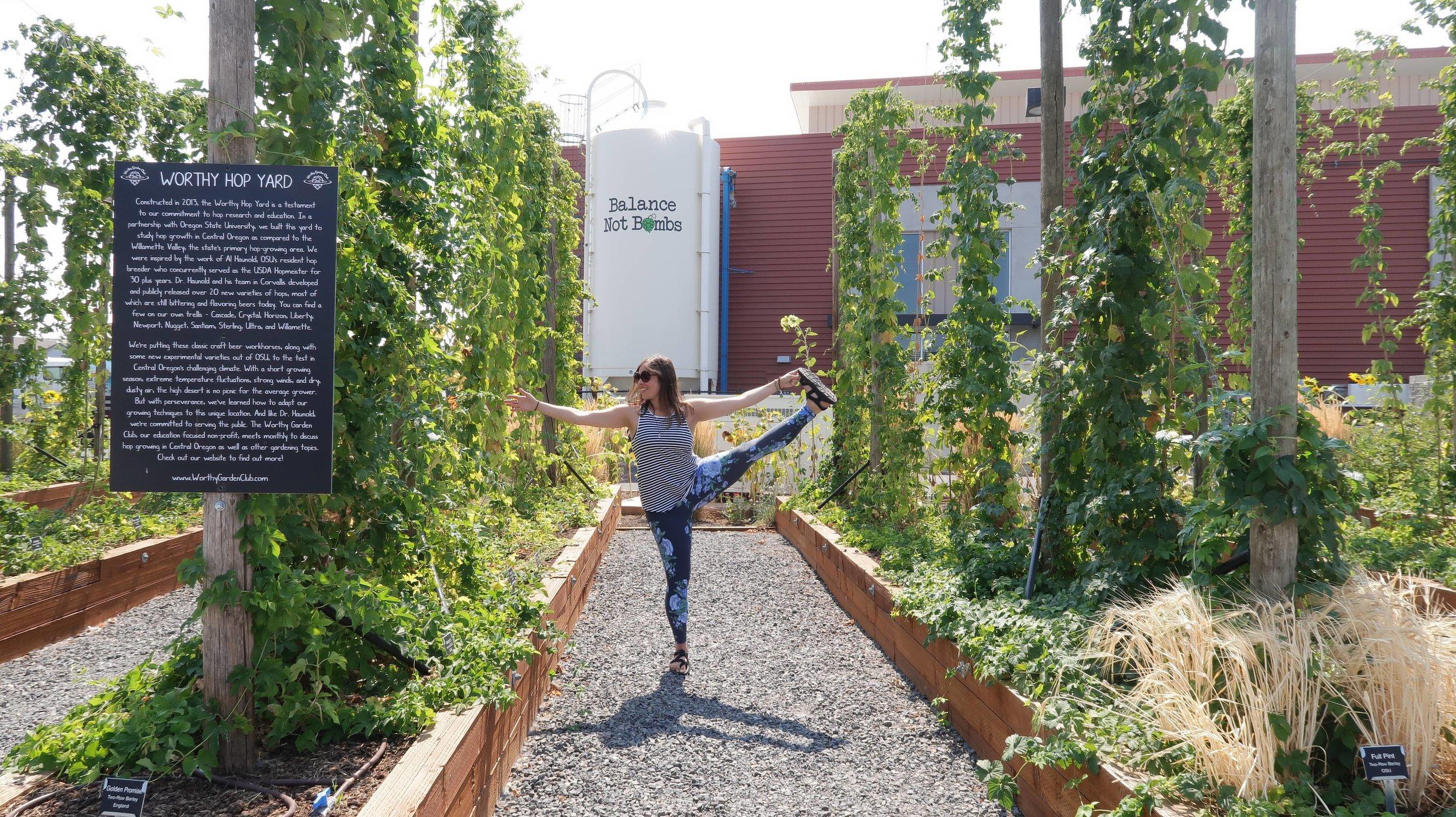 yoga beer retreat