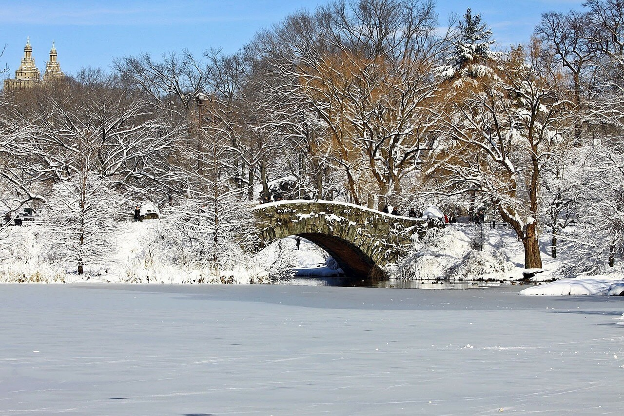 Winter in Central Park by Talek of Travels with Talek