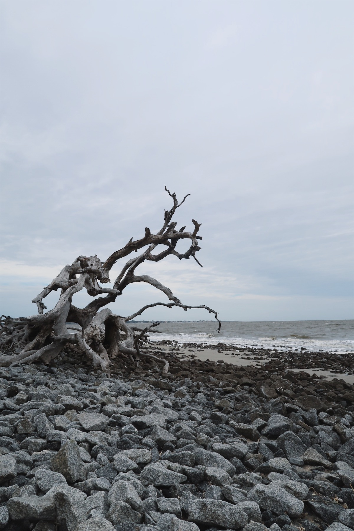 driftwood-beach-jekyll-emsontheroad