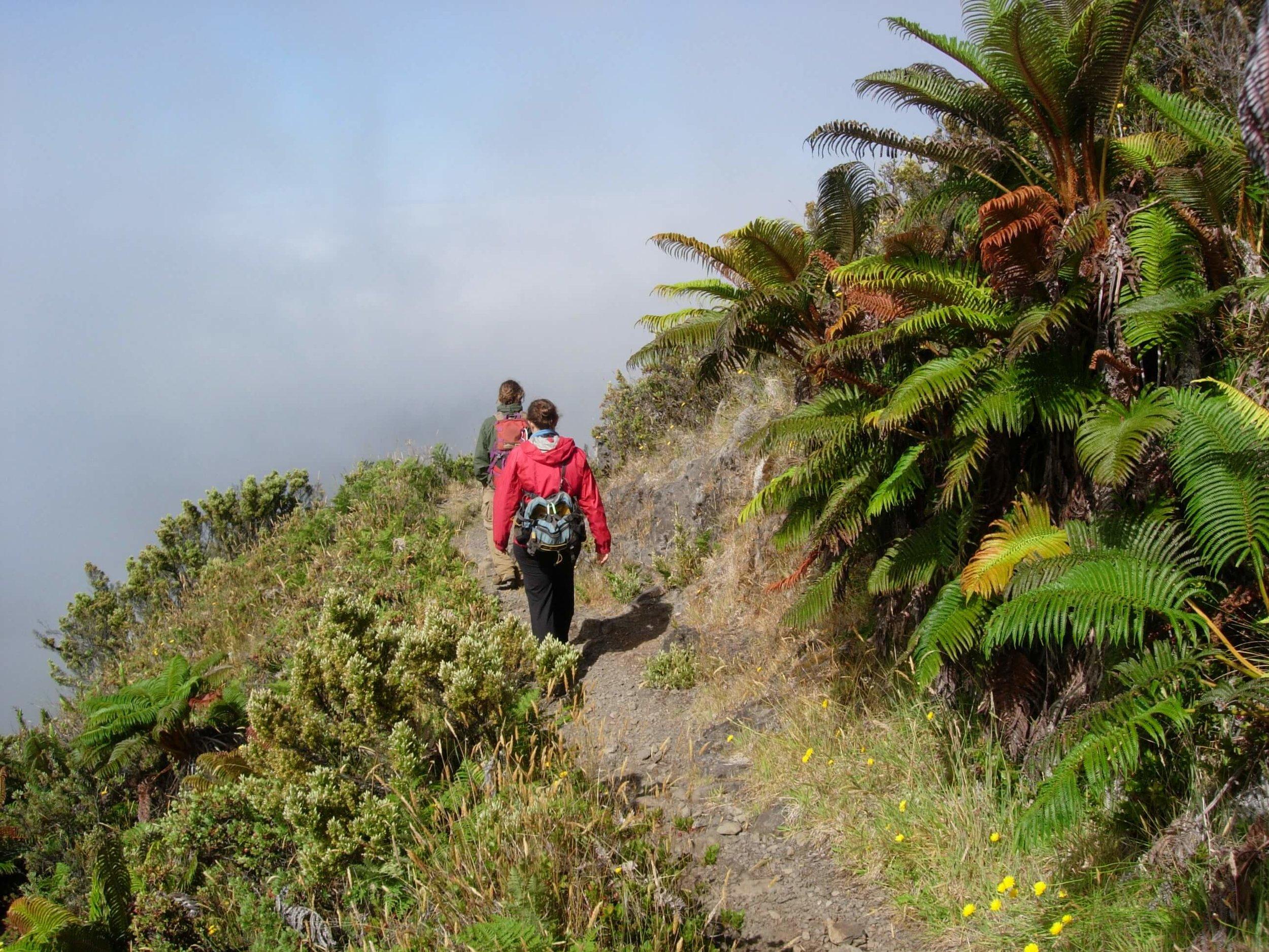 Hiking at Haleakala National Park