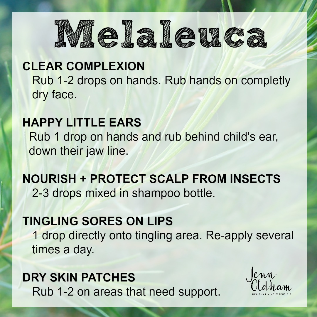 How to Use Melaleuca Essential Oil - Jenn Oldham.jpg