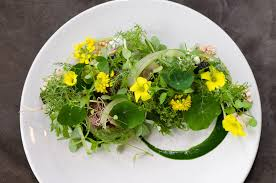 Kahn'sche Kreationen: Hühner-Confit mit Haselnüssen, Eier mit Pilzen und Salt,Wagyu-Beef mit Blümchen, schwarze Karotten mit Grünkohl