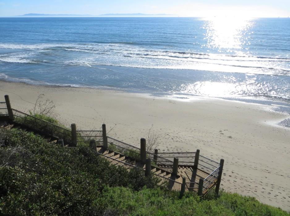 Rincon-County-Beach-Carp-BryceFeb2016-12-938x700.jpg