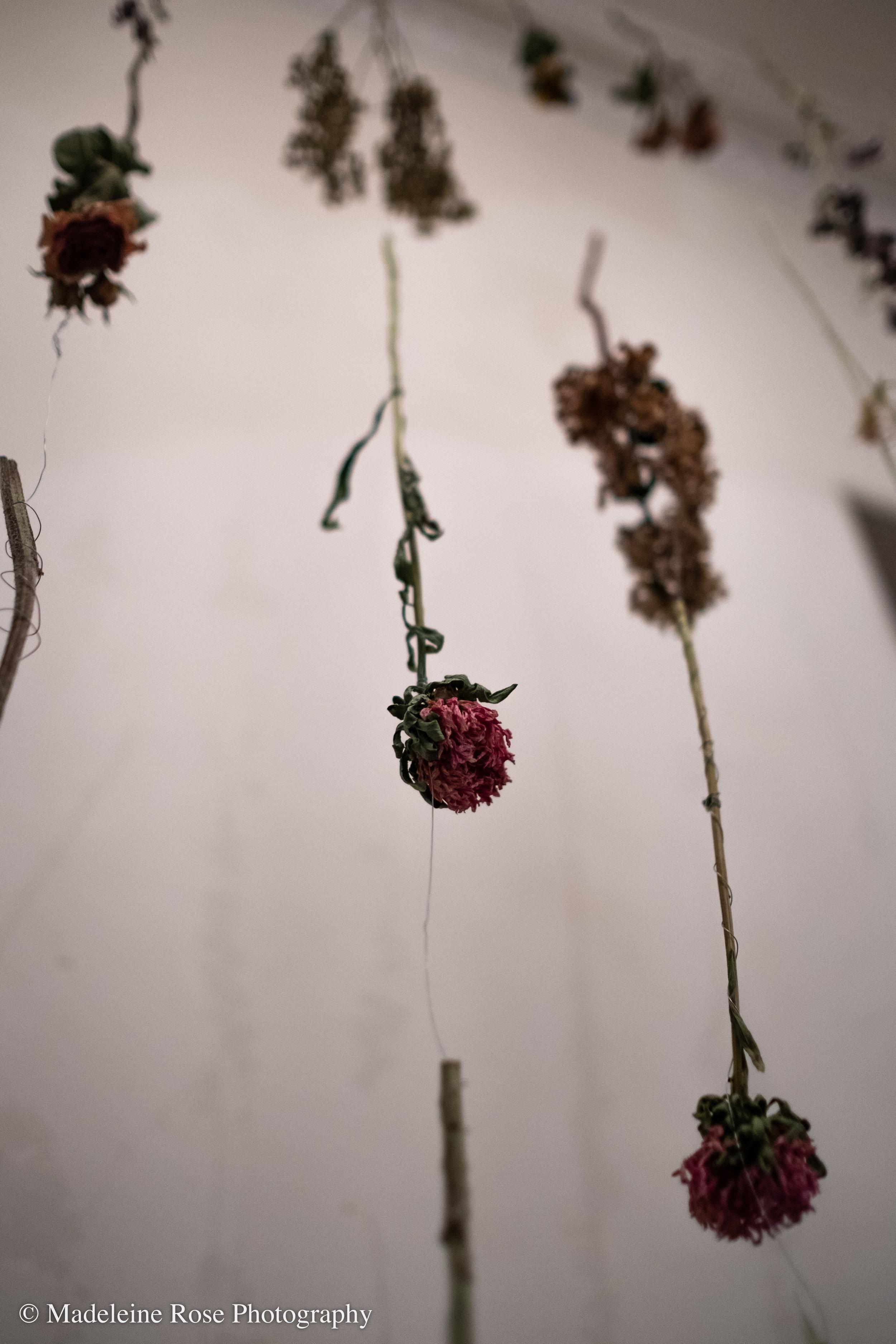 180811_EF_funeralflowers-2.jpg