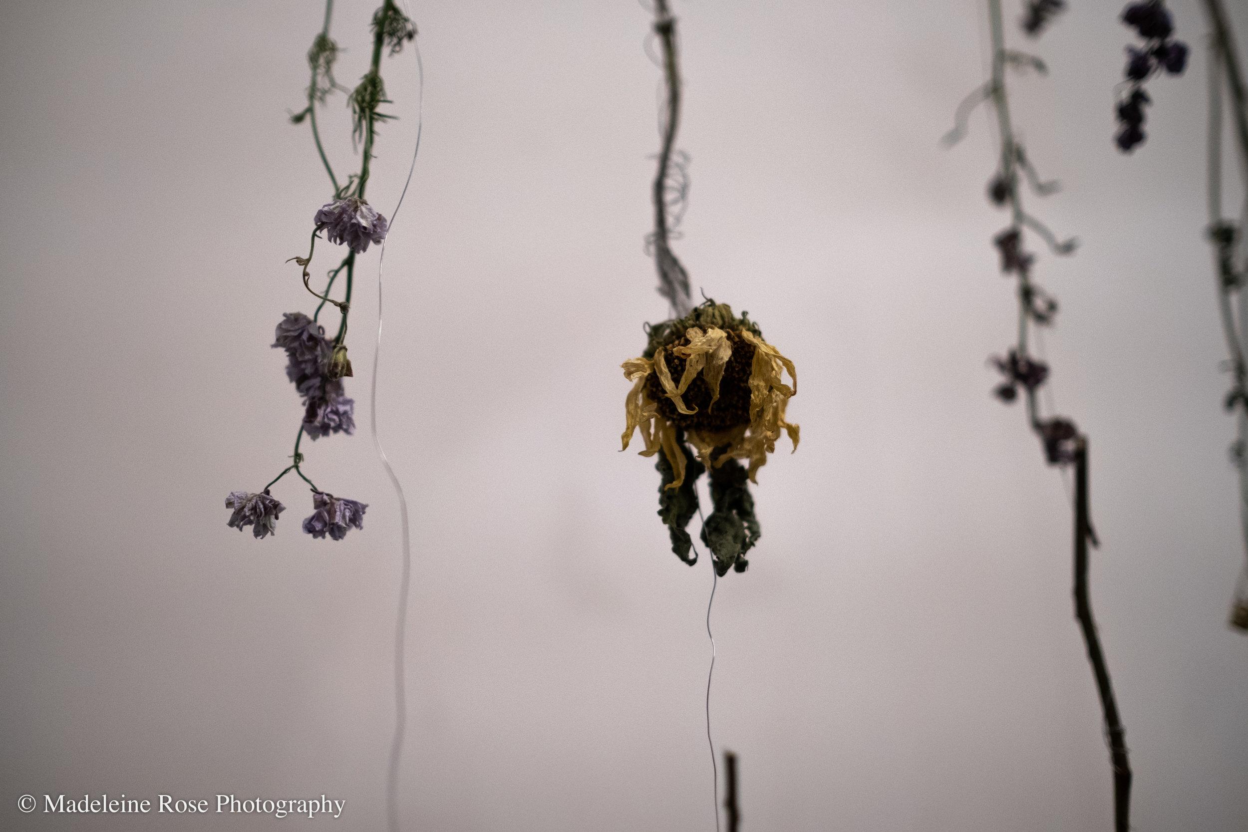 180811_EF_funeralflowers-1.jpg