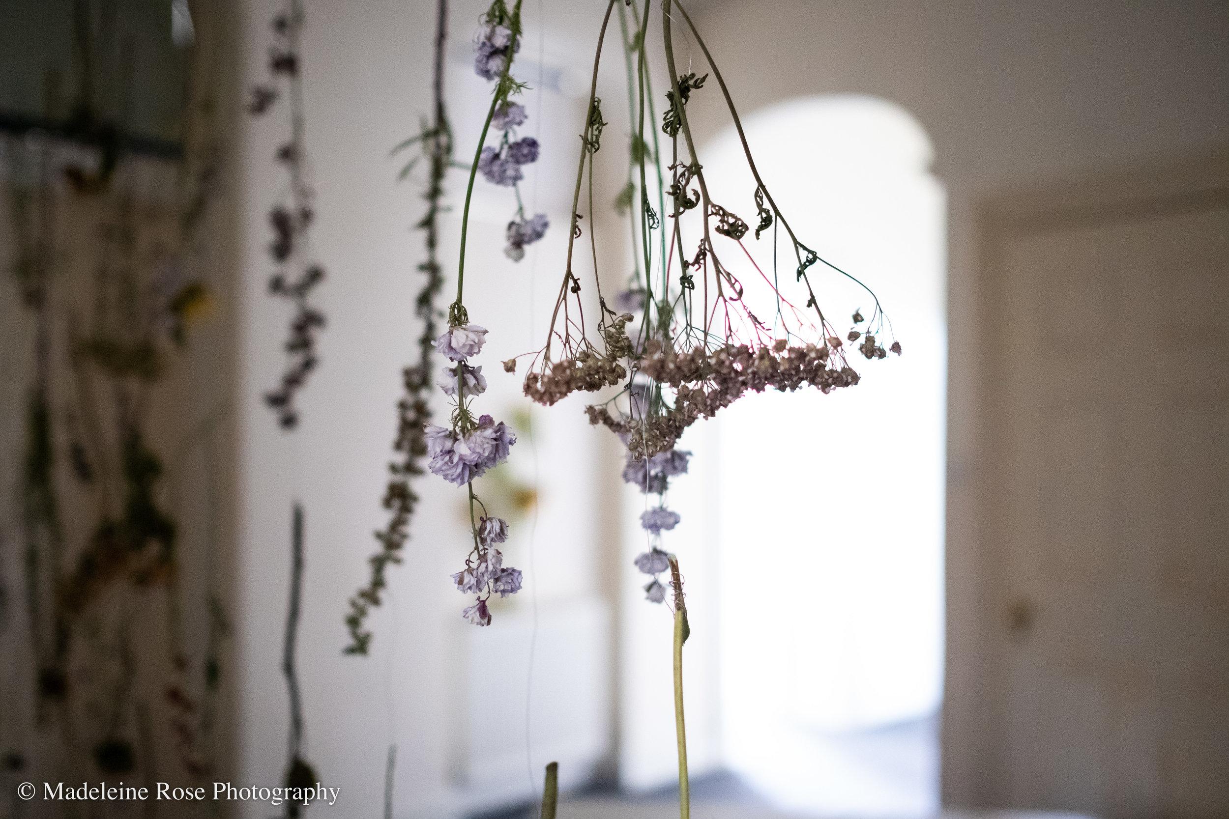180811_EF_funeralflowers-3.jpg
