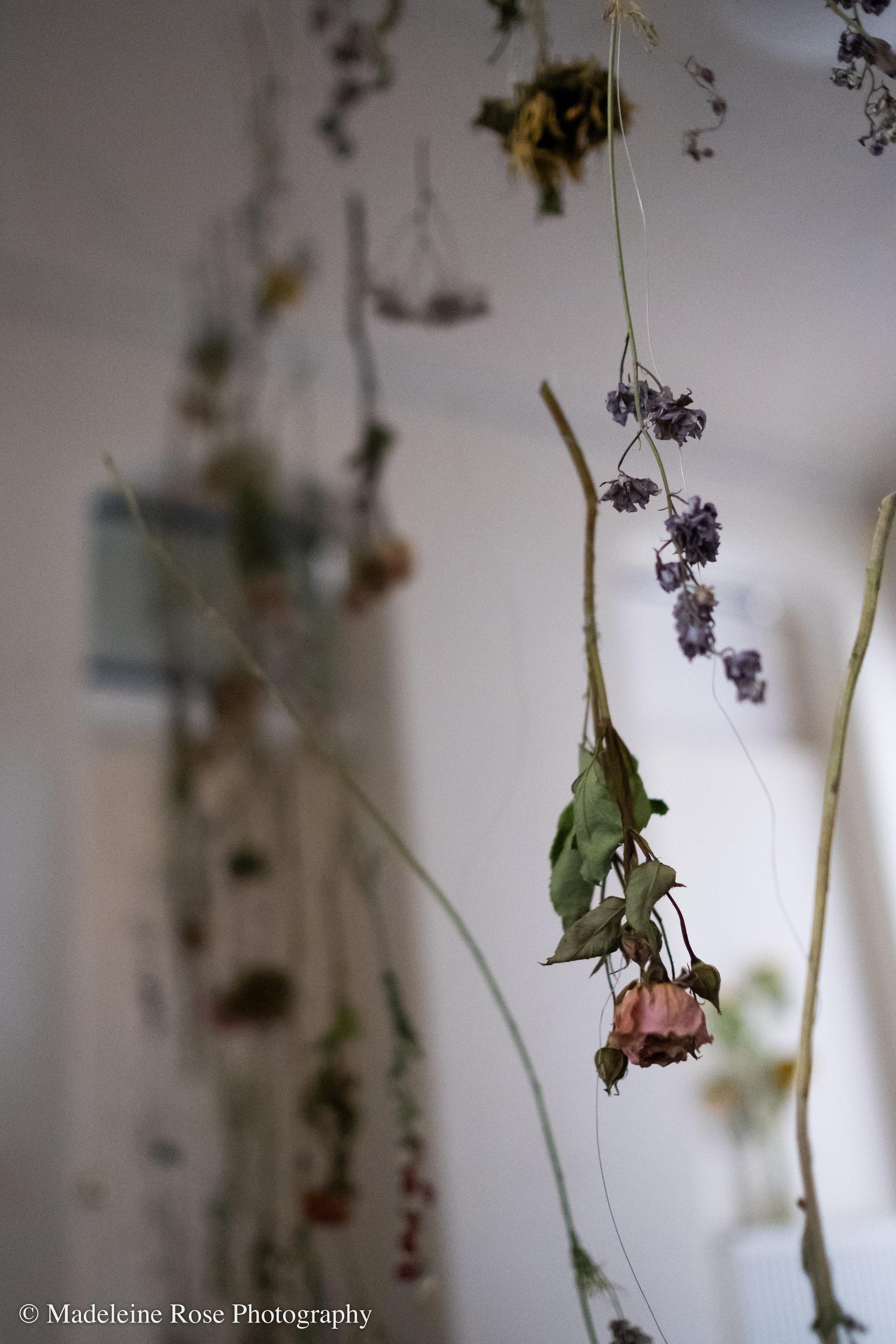 180811_EF_funeralflowers-4.jpg