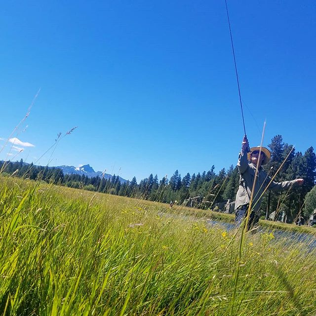 Trout as well as eternal salvation comes by grace; and grace comes by art; and art does not come easy. - Norman Maclean #ariverrunsthroughit #troutbum #summervibes #upperleftusa