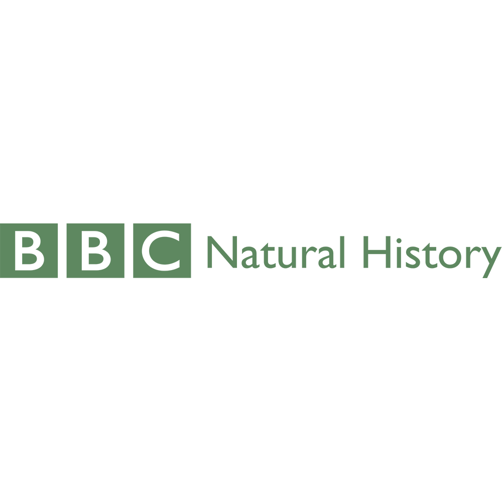 BBC NHU Logo_Colour.png