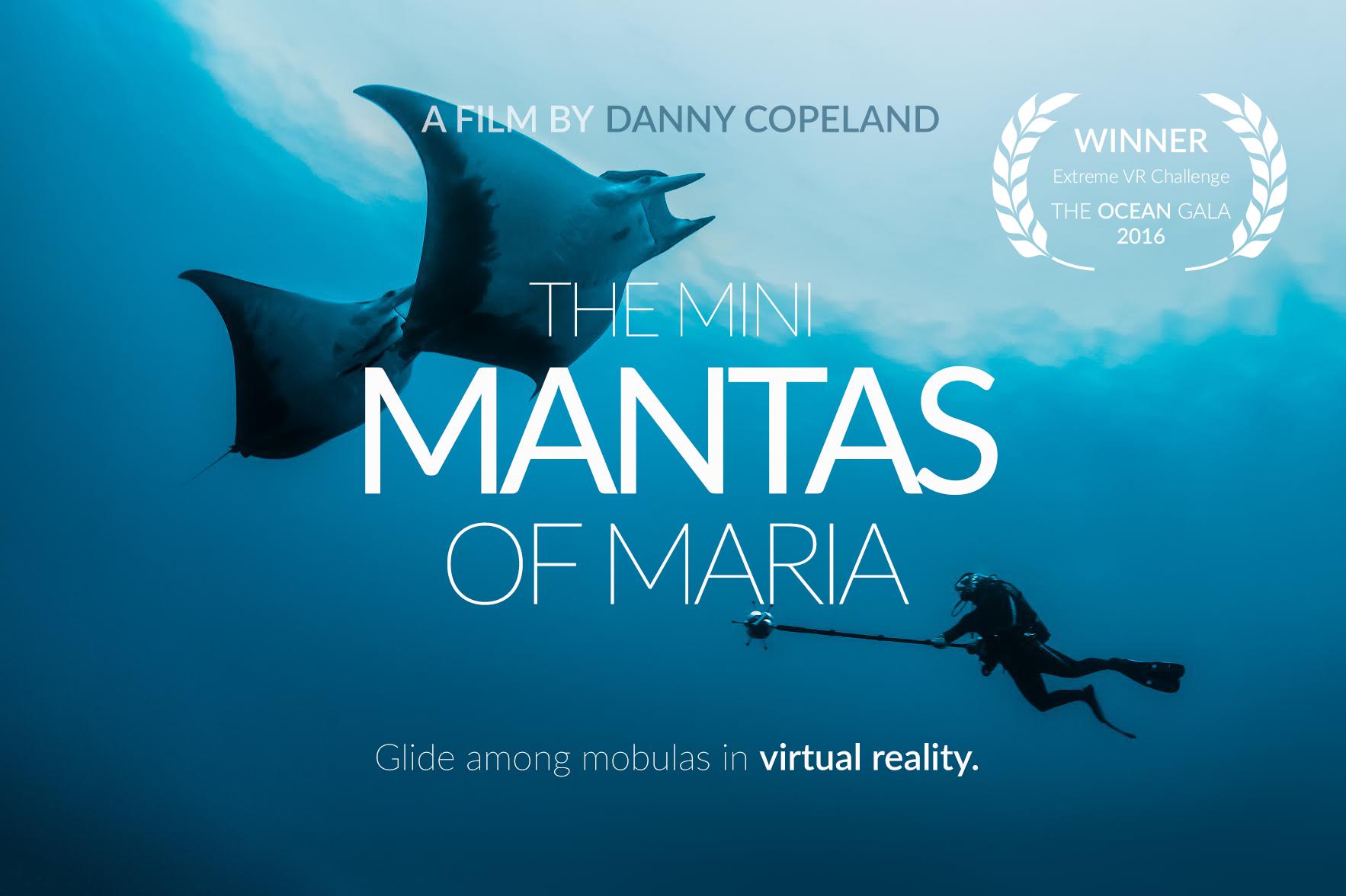 Mini Mantas of Maria_Website Thumbnail.png