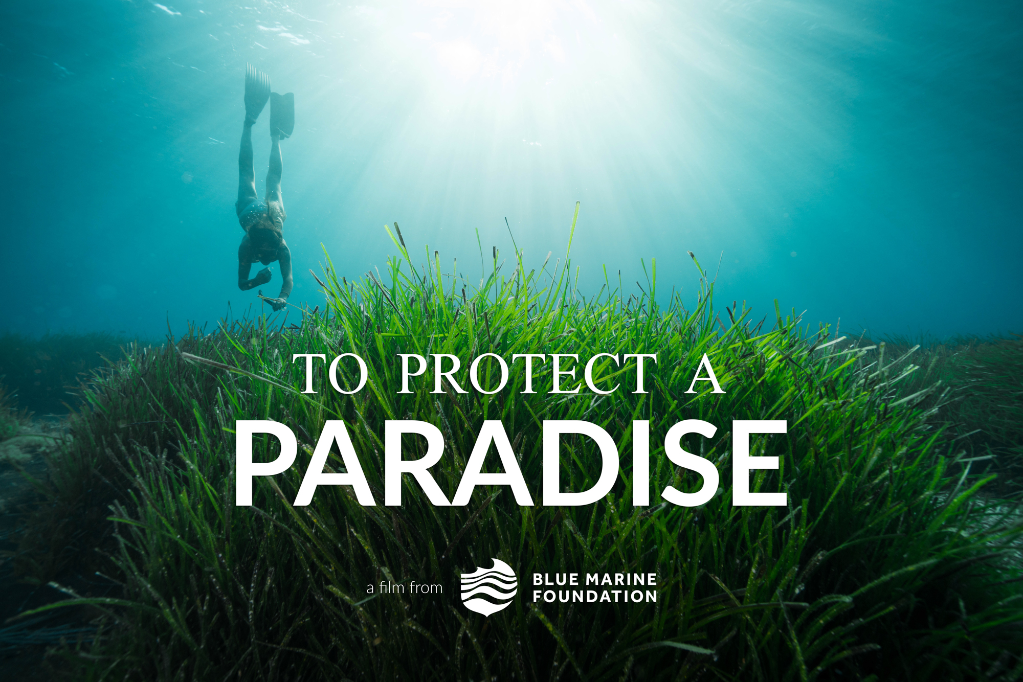 Movie Poster_To Protect A Paradise_Landscape.jpg