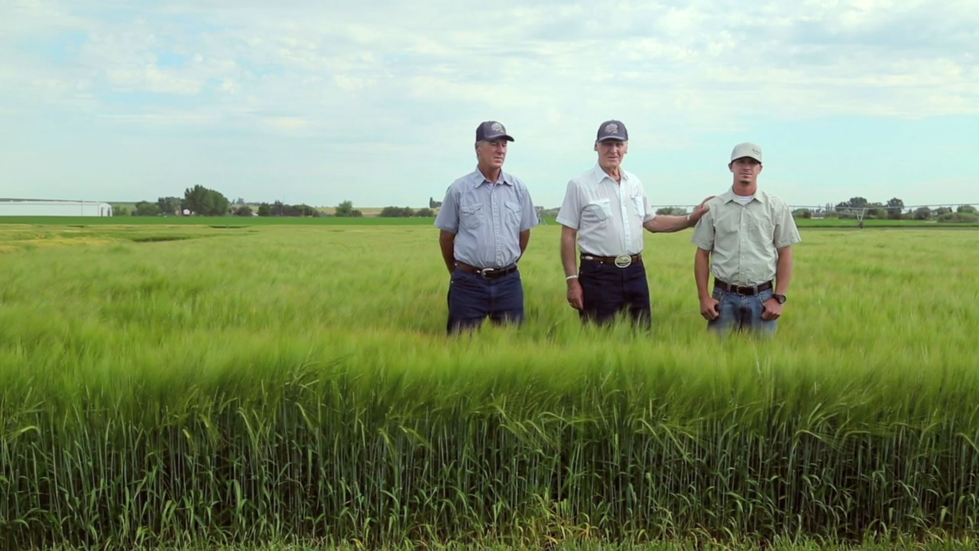 Barley Farmers