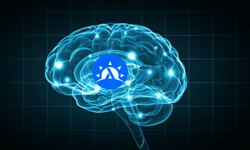 Haskell Brain Graphic.png