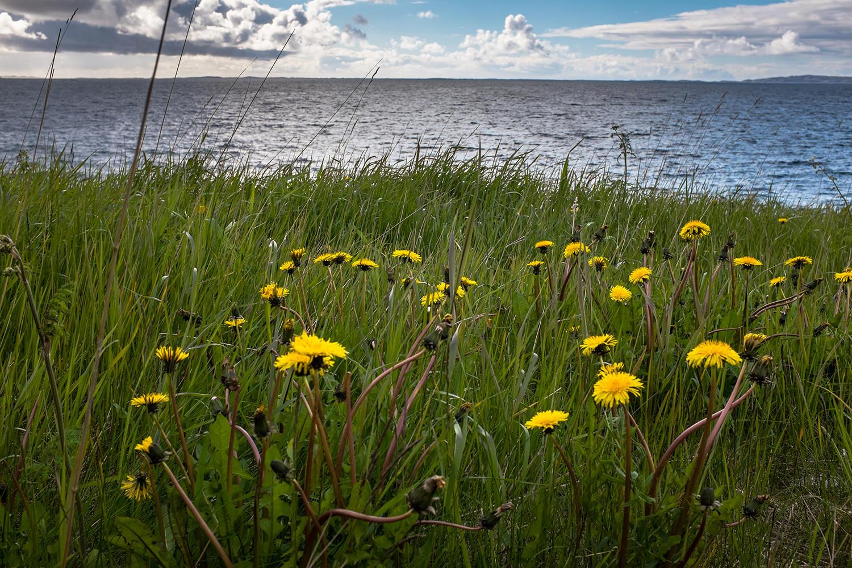 Norway-137.jpg