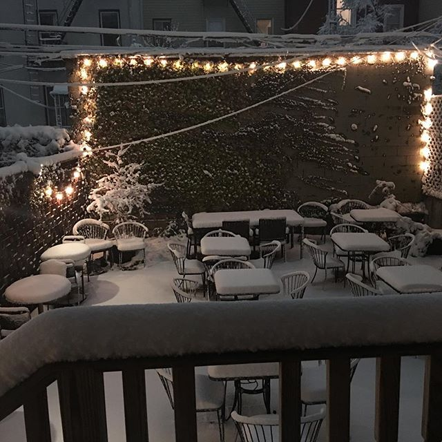 Come play in our backyard! Or stay warm inside with a spiced apple hot toddy ($9) and join us for trivia w @nyctrivialeague tonight at 8pm! #snow #hottoddy #happyhour #greenpoint #brooklyn #trivianight #free
