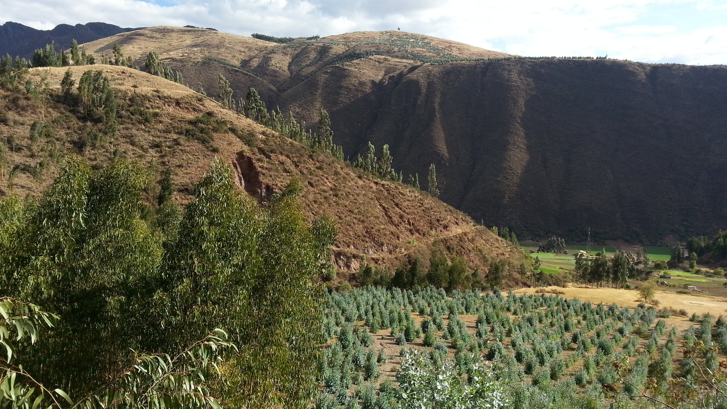 PERU (eMi)    In October 2014, a member of the Praxis team conducted a topographic survey of 8 acres outside of Cusco for a proposed school.  Topographic Suvey