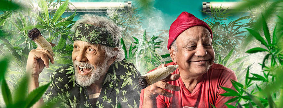 Hire Cheech & Chong