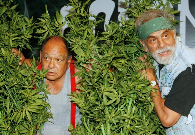 Cheech & Chong Booking