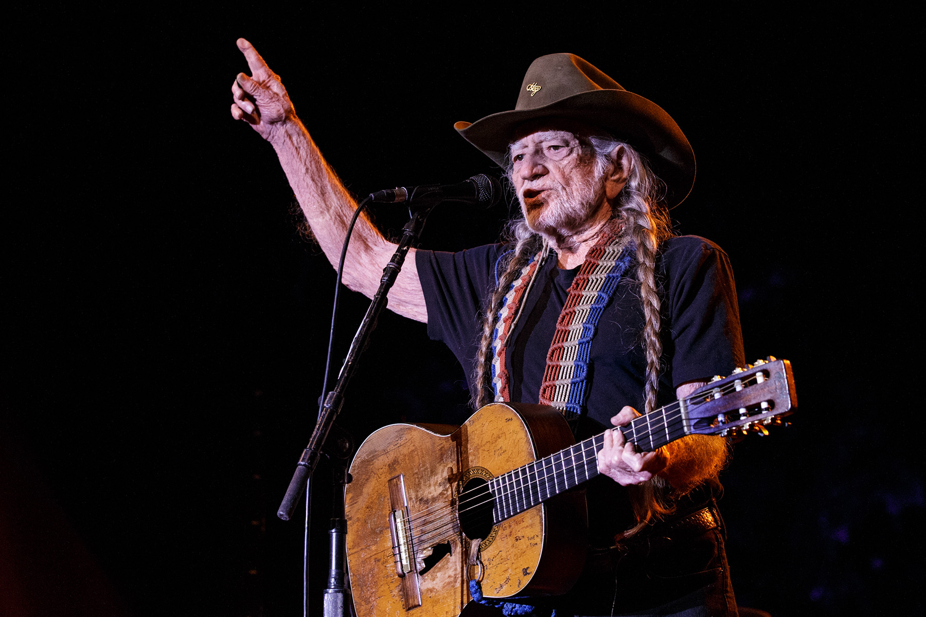 Hire Willie Nelson
